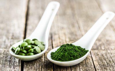 Właściwości Chlorelli i Zielonego Jęczmienia w wynikach badań
