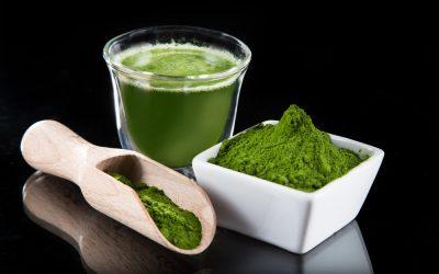 Zielona Żywność nie jest lekiem, ale leczy. To jak to jest?